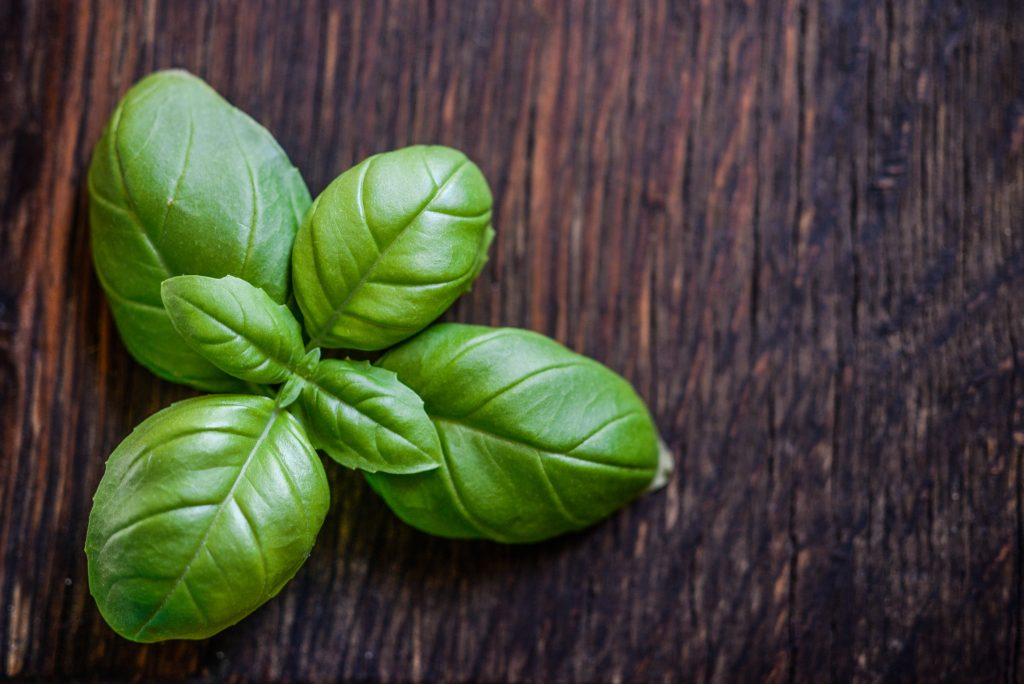 Basil leaves.